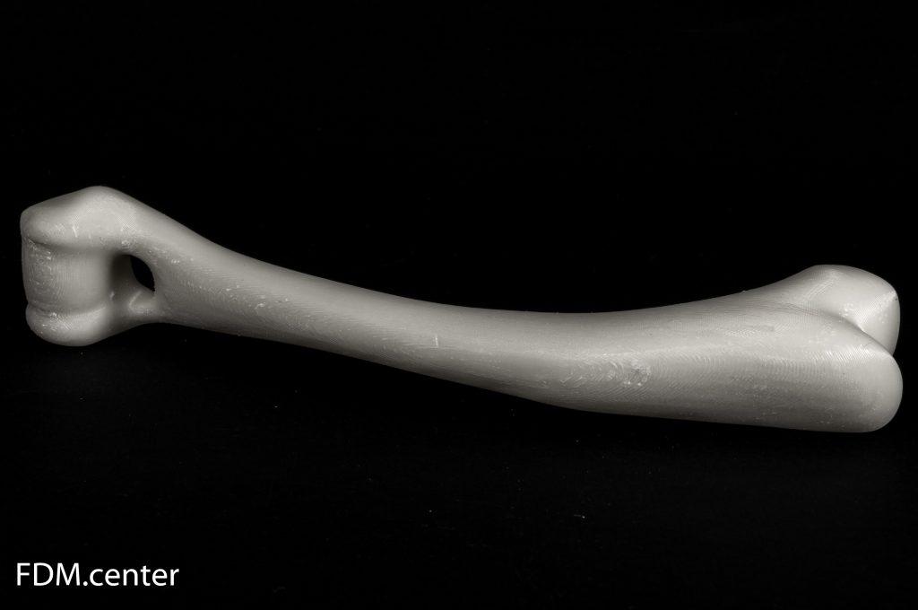 Плечевая кость собаки 3d печать