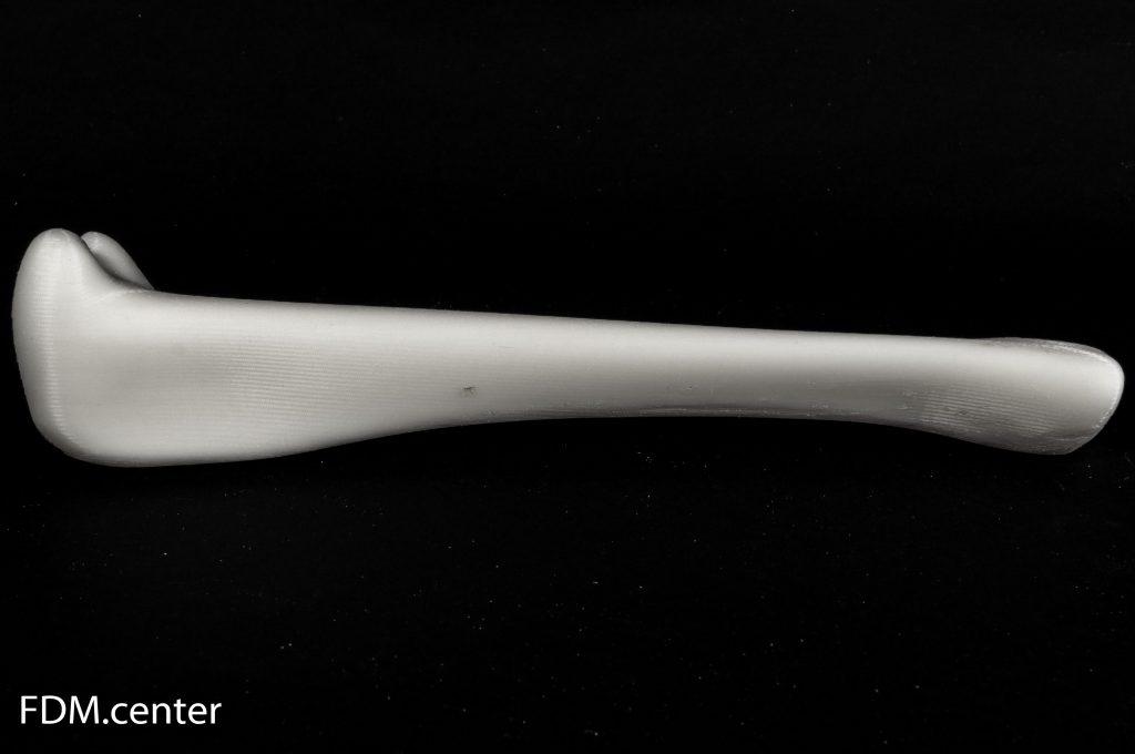 Большая берцовая кость собаки 3d печать